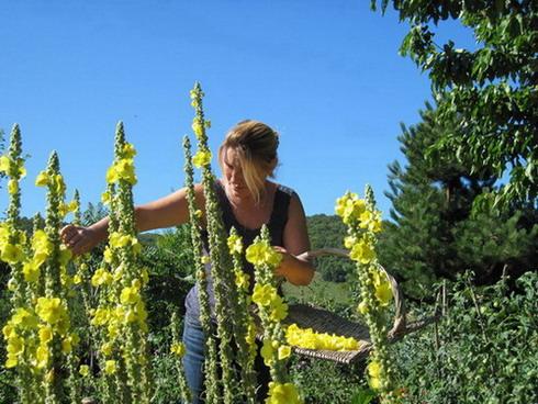 jardin rhone alpes isere bièvre valloire